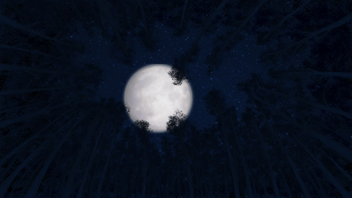 Moon Trees Background